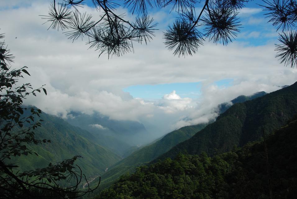 title='福建武夷山国家级自然保护区'